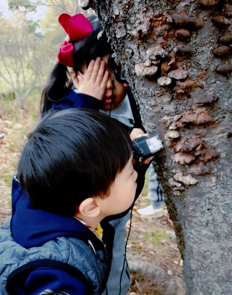 [사진자료2]뚜벅숲탐험대.jpg